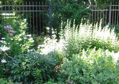 Moonshadows Back Garden