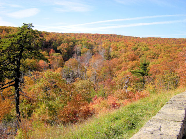 Fall Colors along Skyline Drive